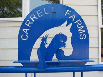 carrell-farms1